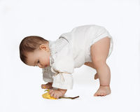 Toddler learning to walk isolated on white background. Toddler learning to walk isolated on white Royalty Free Stock Photo