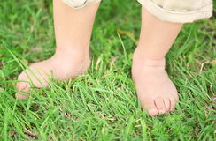 Toddler legs in the green grass Stock Photo