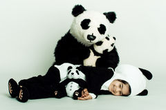 Toddler loving pandas. Child wearing a panda costume holding a little baby panda Stock Photography