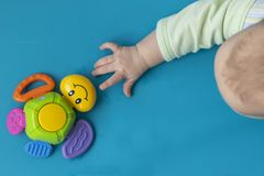 The Toddler New Born hand stretches to the right to the toy of a multi-colored turtle with a smile on a blue background. Close- stock image