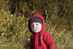 Toddler outdoor with pacifier. Small boy, outdoors, wearing a red hooded sweatshirt, with a pacifier royalty free stock image