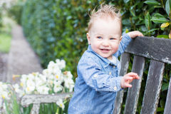 Toddler in the park Stock Photography