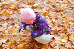 Toddler in the park. Toddler collecting leaves in the park Stock Photo