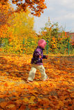 Toddler in the park Stock Images