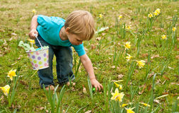 Toddler Picking Up Easter Egg Royalty Free Stock Photo