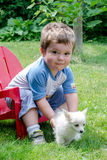 Toddler picking up puppy stock image