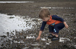 Toddler playing on beach Royalty Free Stock Photography