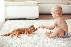 Toddler playing with cat Stock Photo