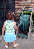 Toddler Playing with Garden Hose. One year old girl with white bow in hair, attempting to unroll garden hose from its reel, standing beside brick wall and air Stock Photos