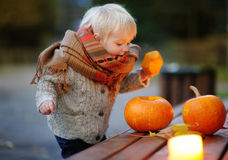 Toddler playing with halloween pumpkins Royalty Free Stock Images