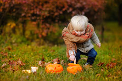 Toddler playing with jack-o-lantern Royalty Free Stock Image