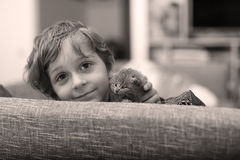 Toddler playing with a kitten Royalty Free Stock Image