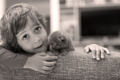 Toddler playing with a kitten Stock Images