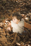 Toddler playing in leaves Royalty Free Stock Photo