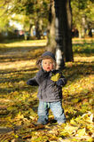 Toddler playing in the park in autumn royalty free stock photography