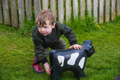 Toddler playing with toy cow. A toddler playing with a toy cow in garden stock photo