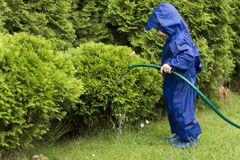 Toddler Playing with watering hose in green garden. Young gardener pouring bushes. Copy space royalty free stock photography