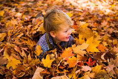 Toddler plays in the leaves smiling Royalty Free Stock Photo