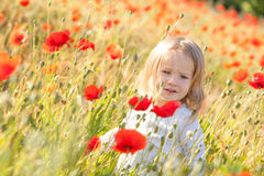 Toddler in poppy field Royalty Free Stock Images