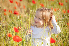 Toddler in poppy field Royalty Free Stock Image