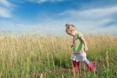 Toddler preschooler blonde girl going down dirt road among farm field Royalty Free Stock Photography