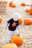 Toddler and pumpkin Stock Photography