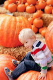 Toddler at the pumpkin patch Stock Image