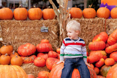 Toddler at the pumpkin patch Royalty Free Stock Image