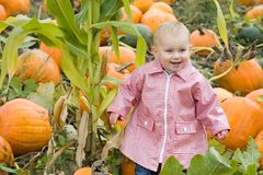 Toddler in pumpkin patch Stock Images