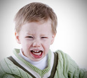 Toddler rage. Young boy having a fit of anger portrait Stock Image