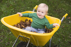 Toddler riding in wheelbarrow Stock Images