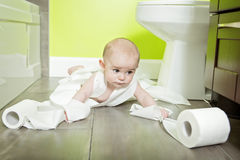 Toddler ripping up toilet paper in bathroom Stock Photo