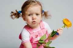 Toddler with rose Stock Images