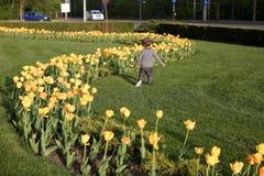 Toddler running Royalty Free Stock Image