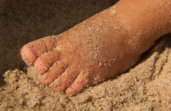 Toddlers Sandy Foot on Beach at Seashore. Foot of a small child covered with sand is seen closeup in sunlight and shadow at the seashore. Macro image in Stock Image