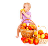 Toddler sitting on apples Stock Photography
