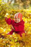 Toddler sitting on maple leaves Stock Image