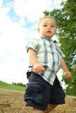 Toddler standing royalty free stock image
