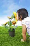 Toddler with sunflower stock photos