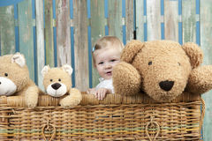 Toddler with teddy bears standing in a trunk stock photo