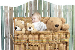 Toddler with teddy bears standing in a trunk Royalty Free Stock Image