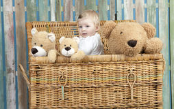 Toddler with teddy bears standing in a trunk Royalty Free Stock Photography