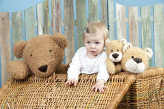 Toddler with teddy bears standing in a trunk Stock Image
