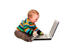 Toddler Using Laptop Computer Royalty Free Stock Photo