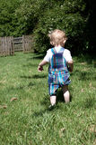 A toddler walking in the grass Stock Photo