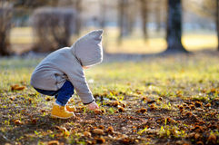 Toddler walking outdoors at the warm spring day Stock Photos