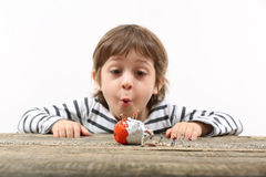 Toddler watching miniature people breaking an egg Stock Photos