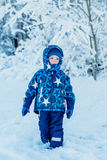 Toddler winter portrait of a boy standing Stock Image