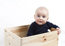 Toddler in wooden box Stock Photography