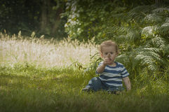 Toddler in woods Royalty Free Stock Photos